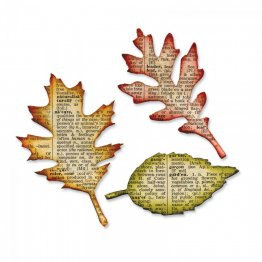 Sizzix® Bigz™ Die - Tattered Leaves By Tim Holtz®