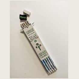 Treewise Pencils™ HB #2 Writing Pencils (10pk) incl. Pencil Sharpener & Eraser