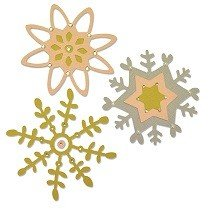 Sizzix Thinlits Die Set 5PK - Delicate Fall by Craft Asylum